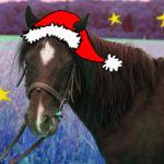weihnachtsroberto